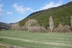 Irunaldea-Entorno-Campos