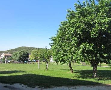 Casa-rural-laMorena-Irunaldea-02