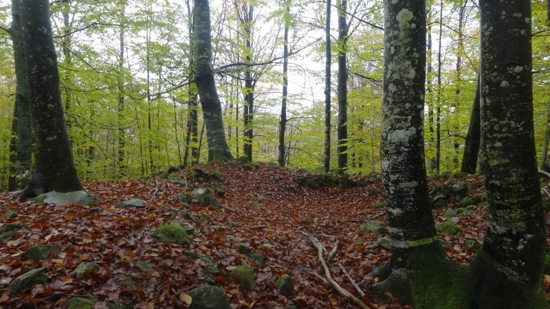 ruta-dolmenes-navarra