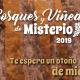 """Propuesta turística para este otoño: """"Bosques y viñedos de misterio"""""""